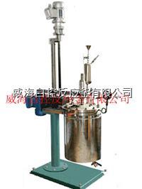 5L高压反应釜 WHFS-5L